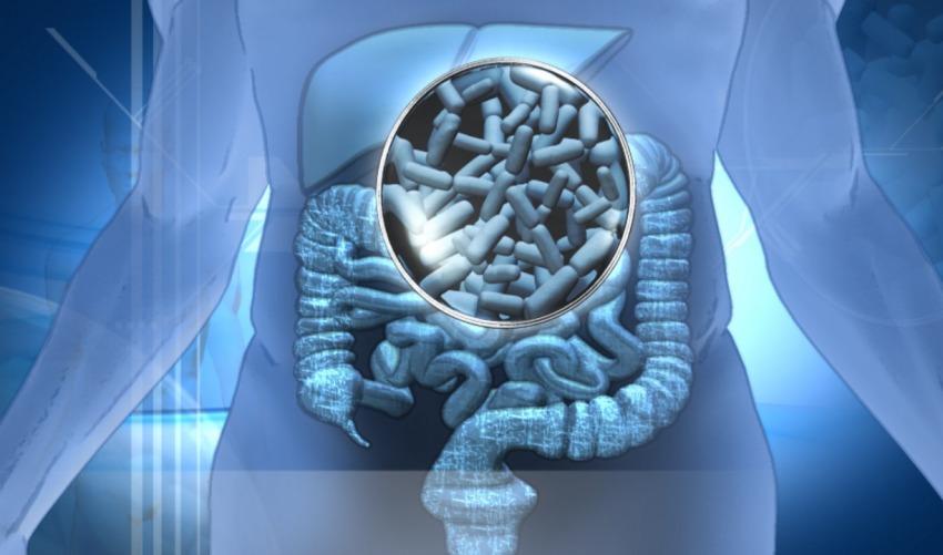 """Microbioma e Microbiota intestinale"""